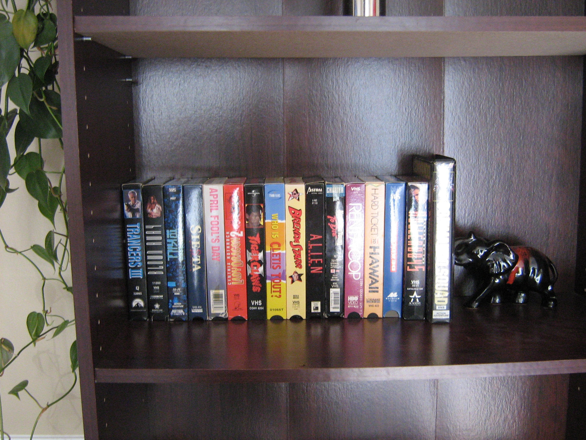 VHS Tapes On A Bookshelf