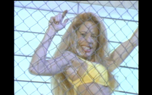 chain link fence sex sexy fred olen ray